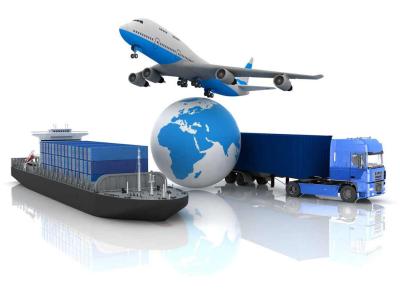 experienced_cargo handlers